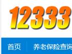 2020年12333社保查询网官网