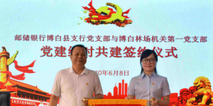 1月银行党支部委员会议记录3篇