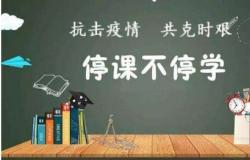 疫情期间老师学习优秀线上教学案例心得2020