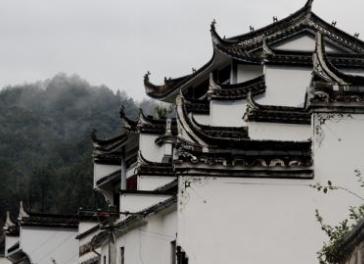 苏州的古建筑除了粉墙黛瓦、飞檐翘角,还有保存相对完好的纯居住民国建筑群(),电视剧《都挺好》取景于此。