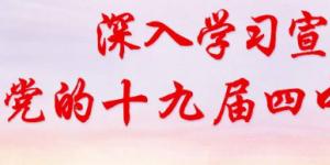 领导干部党员学习十九届四中全会精神心得体会汇编2020