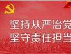 """2020""""坚定理想信念严守党纪党规""""主题党日党课讲稿四篇"""