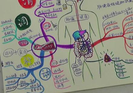 思维导图在护理健康教育中运用三篇