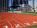 体育技能心得 体育技能感悟50字3篇