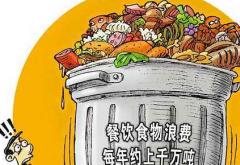 开展餐饮浪费问题专项整治工作方案3篇