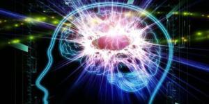 最新神经内科主任总结
