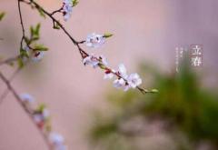 立春咬春吃什么