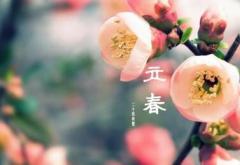 立春祝福暖心句子