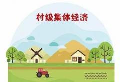 乡村2020年村级集体经济发展计划3篇