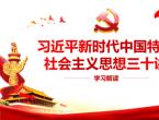 新时代中国特色社会主义思想三十讲心得体会范文3篇