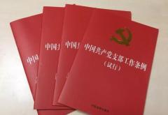 学习《中国共产党支部工作条例(试行)》心得体会