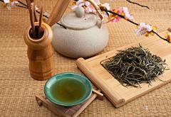 茶叶项目合作协议范本