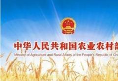 农业农村局开展违法违规调运生猪百日专项打击行动的工作总结