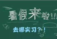 暑假学生实习日志