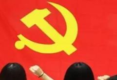 学习党成立100周年心得体会