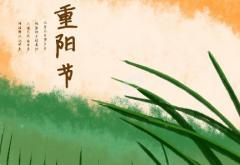 重阳节敬老活动总结3篇