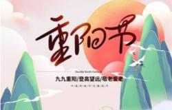 重阳节系列主题教育活动策划3篇